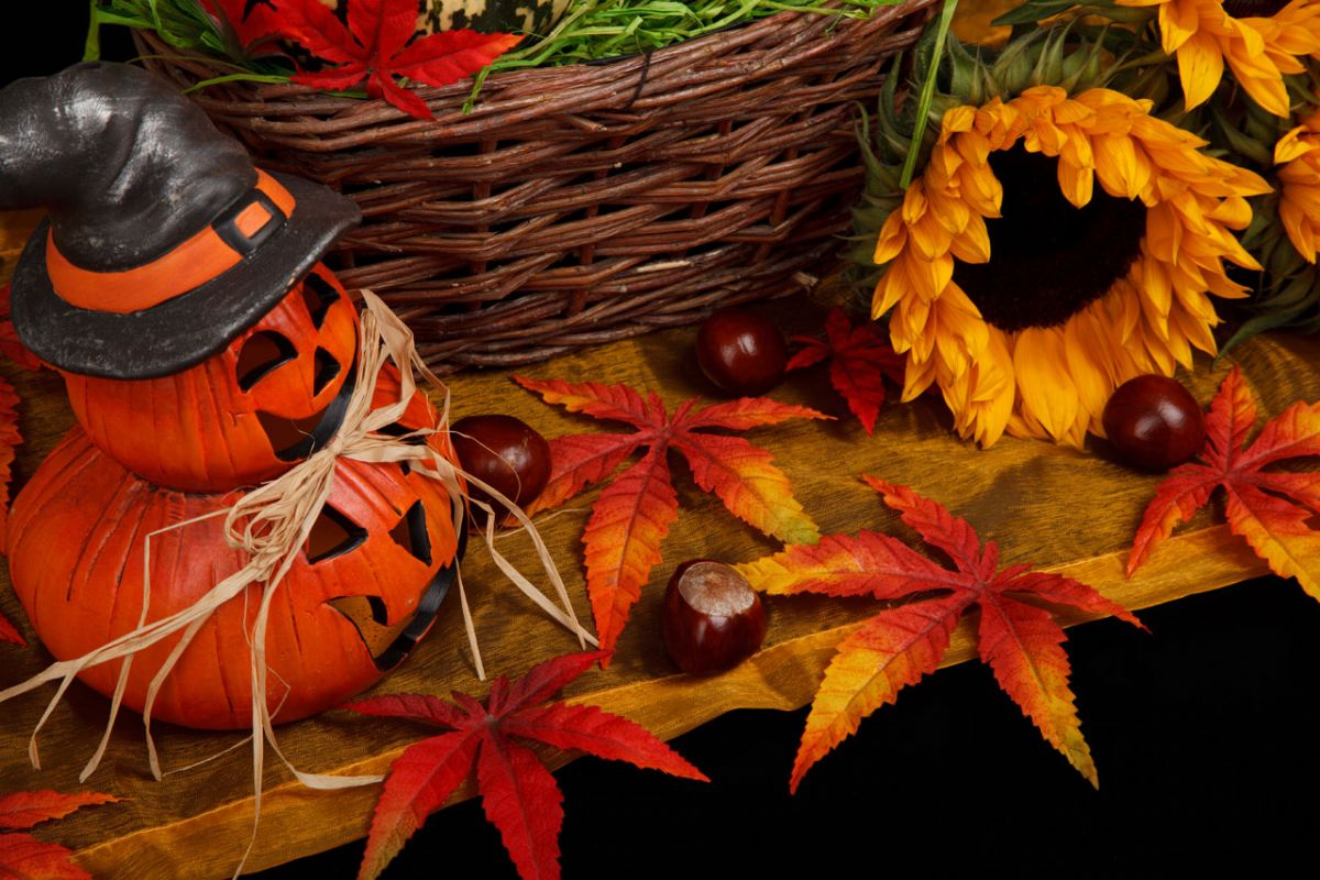 38th Annual Autumn Spectacular Craft Fair